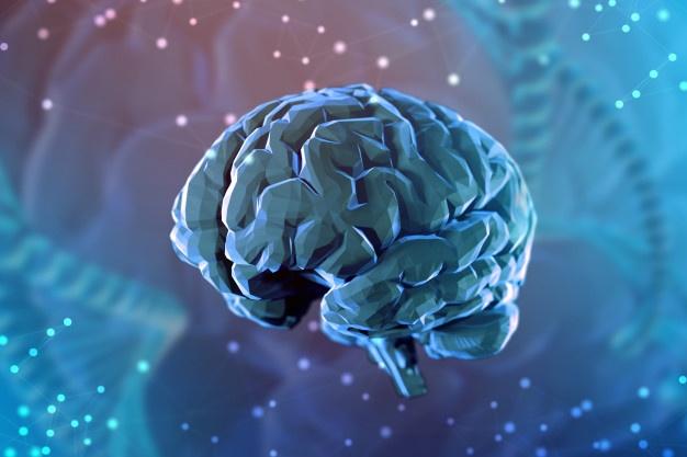 Conheça o cérebro humano e venda mais